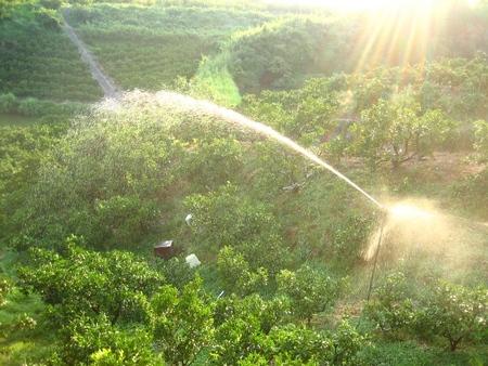 潅水設備等の完備